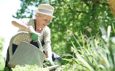 Ebben segít a kerti munka: csökkenő stressz, erősebb immunrendszer